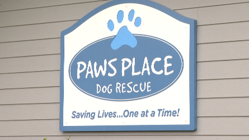 Paws Place is a no-kill dog rescue shelter