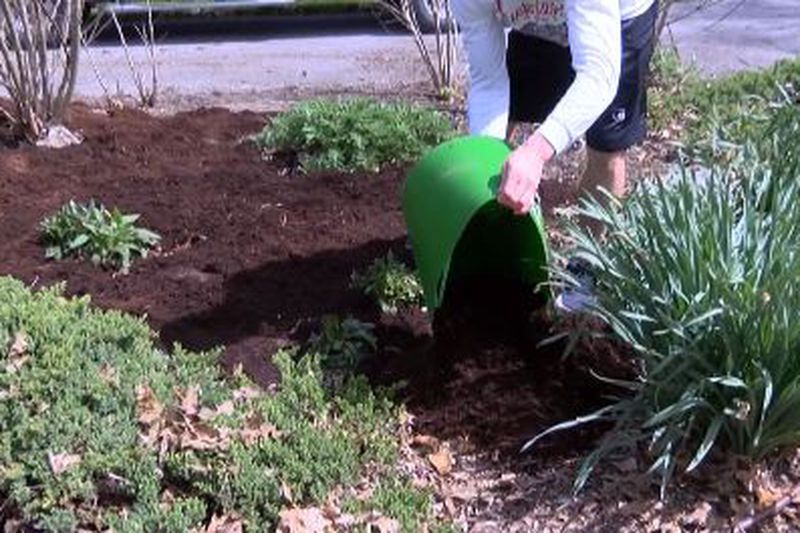 A person spreads mulch in a garden bed.