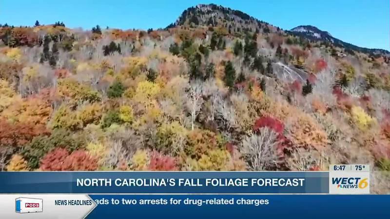 Fall Foliage prediction in NC