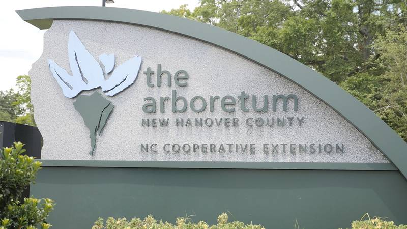 Stormwater runoff at the New Hanover County Arboretum will no longer flow directly into Bradley...