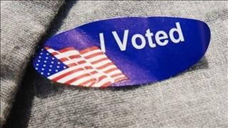 For the first time ever, Brunswick County residents can vote on Sunday. (Source: WECT)