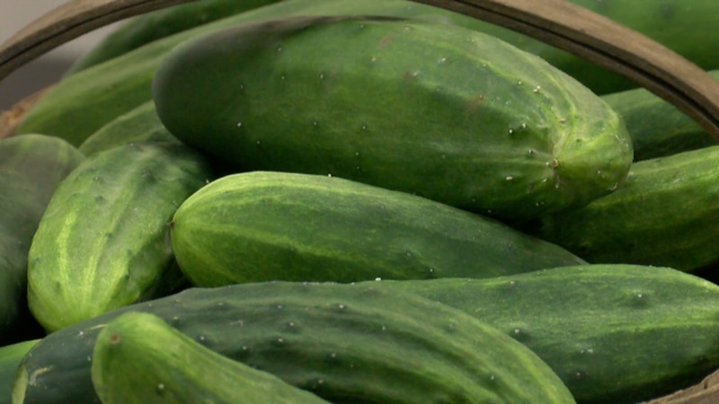 Youth program connecting locally-grown produce and vacationers.