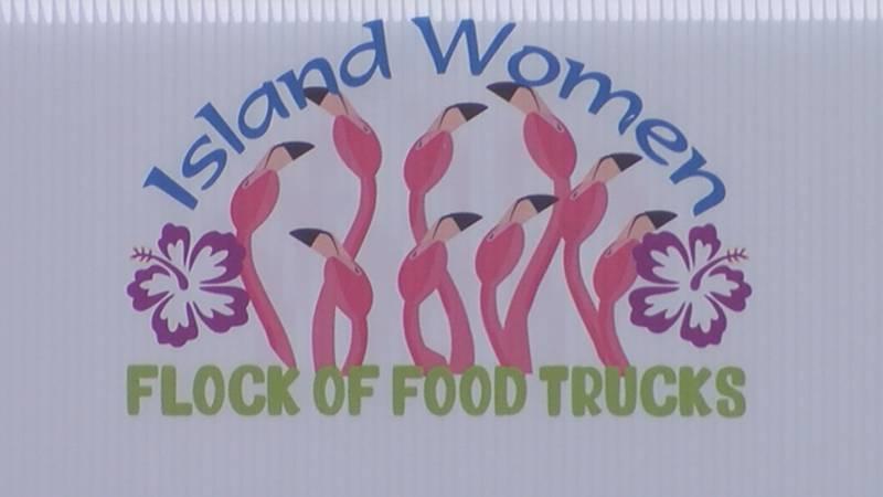 Island Women, a non-profit organization working to enhance the Pleasure Island community hosted...
