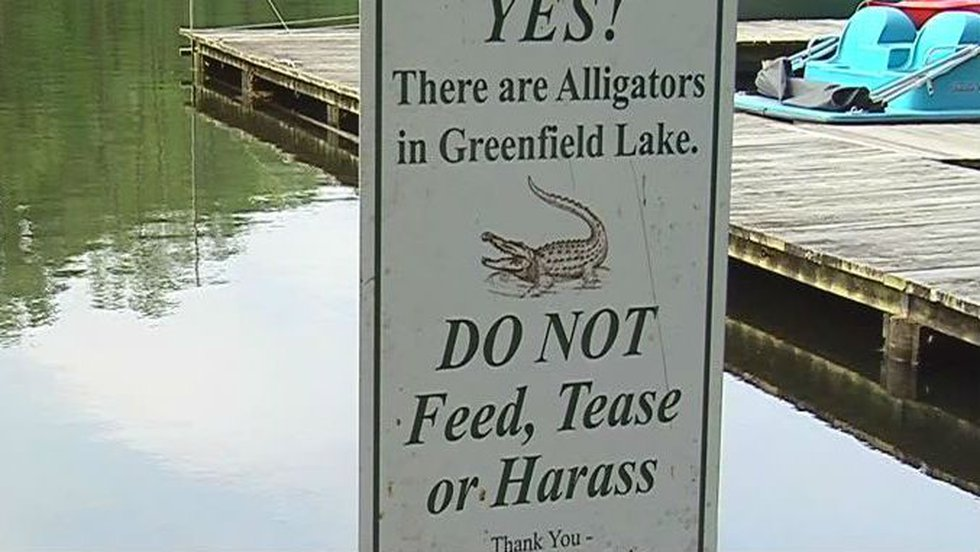 Wilmington's Greenfield Lake has an ample supply of alligators, and there are signs everywhere...