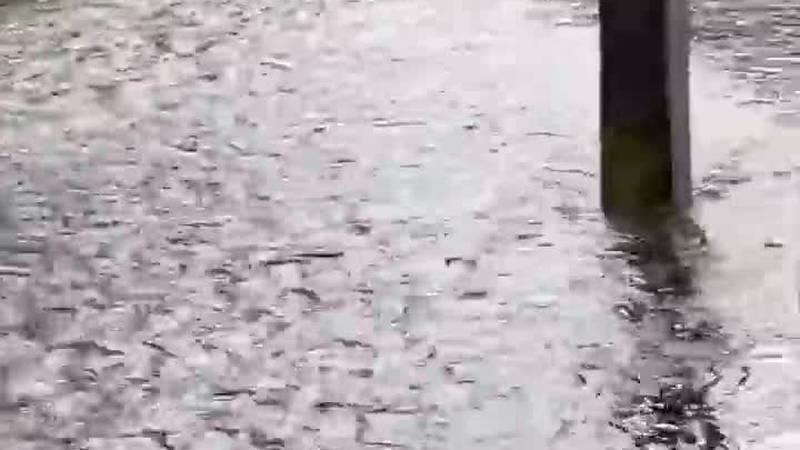 Heavy rain causing flooding across the area (Source: Barbara Bishop)