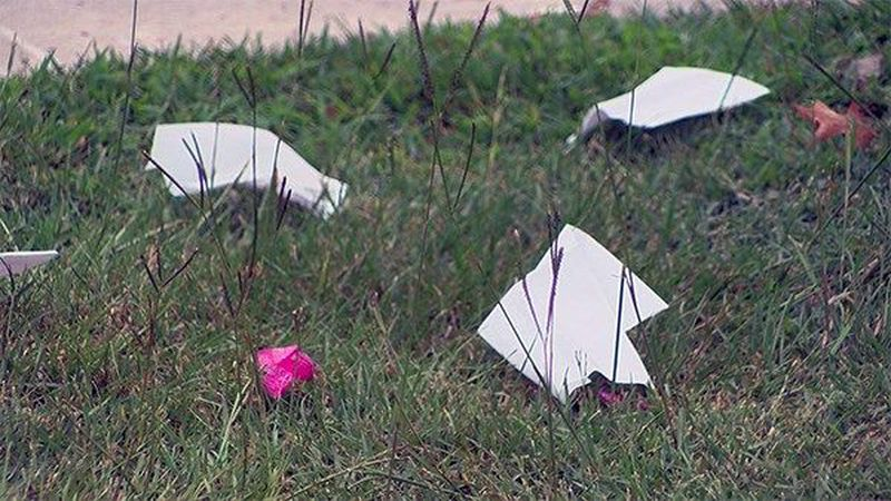 Many residents are concerns about the litter at Flannery Road BREC Park (Source: WAFB)