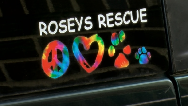 Rosey's Rescue receives new car