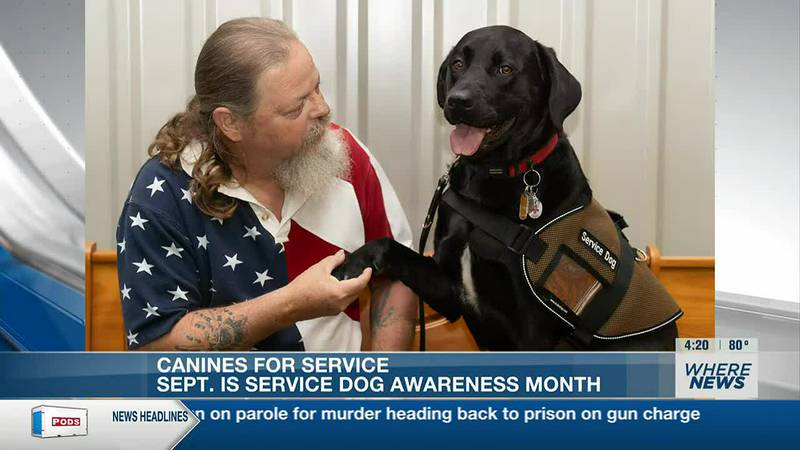 September is Service Dog Awareness Month, which highlights the importance of service animals in...