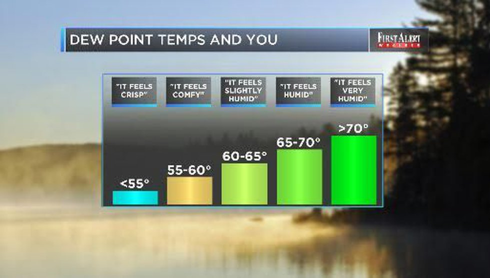 Dew point temperatures: more useful than relative humidity?