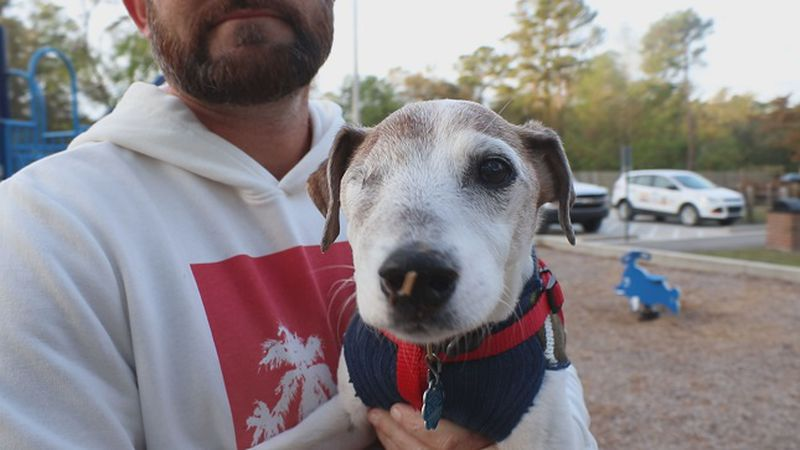 Jeremy Miller's dog with terminal cancer, Jack, who he made a bucket list for. (Source: WECT)