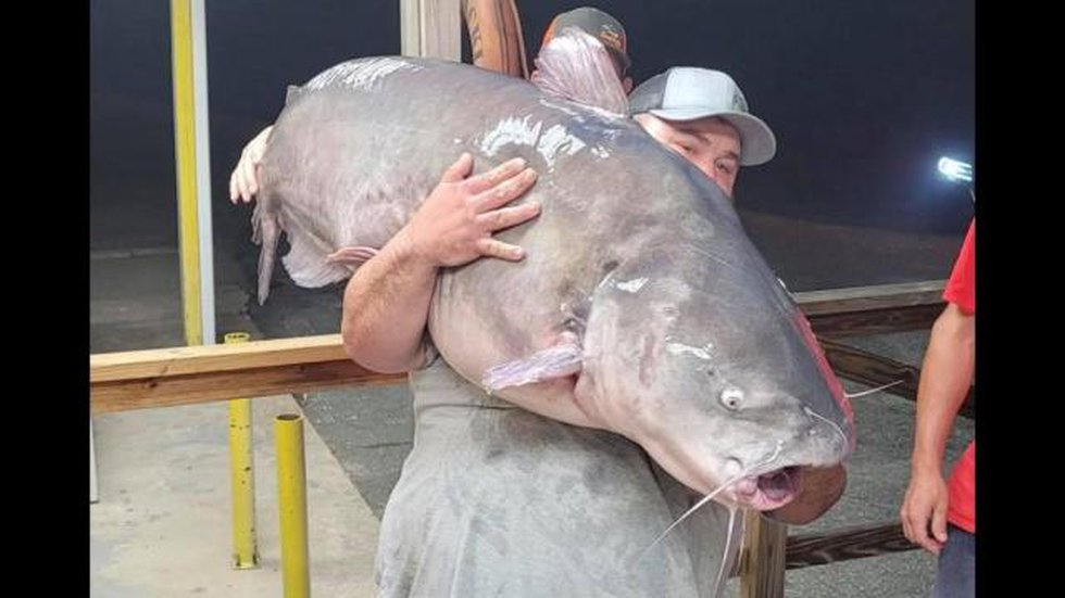 Rocky Baker, from Four Oaks, with the help of his friend Justin Clifton, from Clayton, caught...
