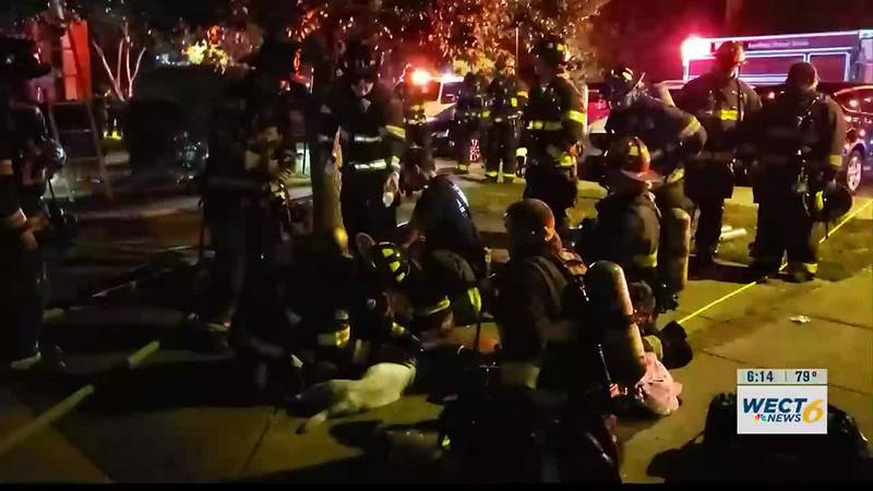 First responders save two dogs in burning apartment