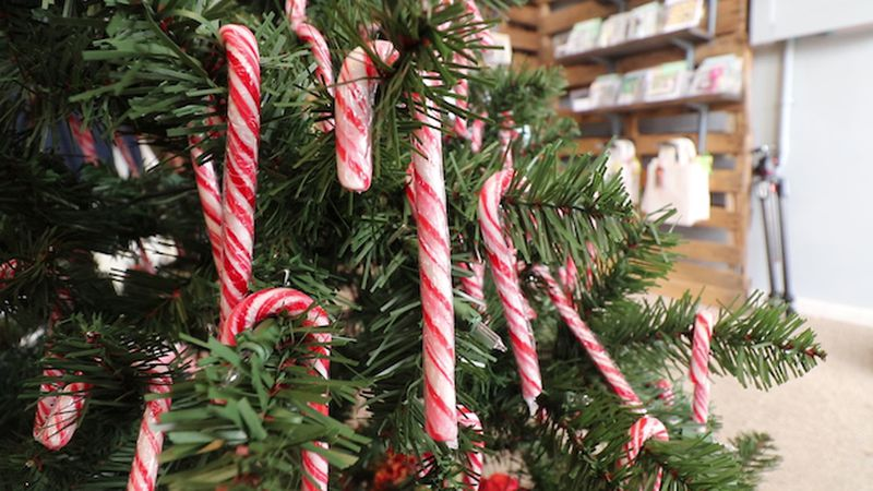 Candy canes on the candy cane tree at Rustic Charm in Burgaw. (Source: WECT)