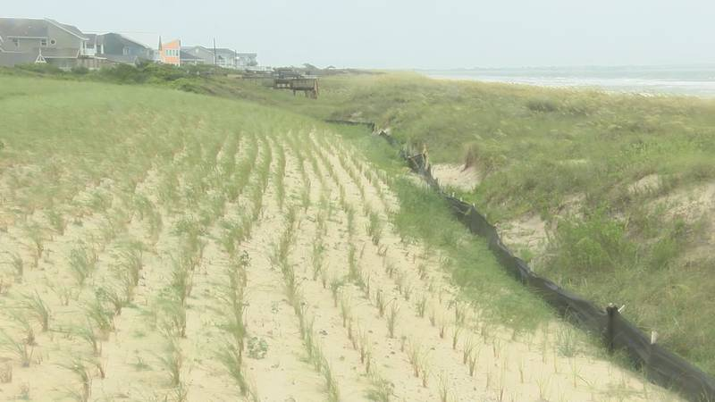 Infiltration Chambers now sit underneath the dunes in Caswell Beach
