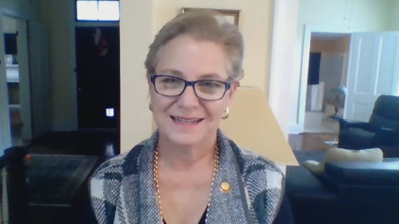 Rep. Deb Butler is seeking reelection as the democratic candidate in the NC House District 18...