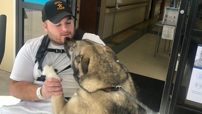 Deputy Zach Bellingham with his dogs